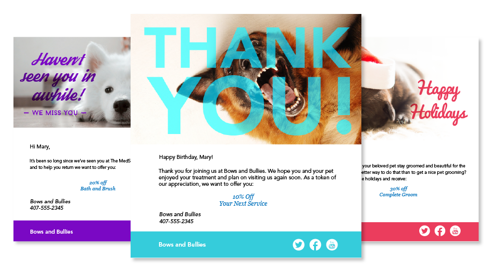 photo of examples of email templates for Pet Grooming studio