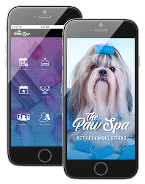 Photo of Pet Grooming Business Branded App Interface on IPhone